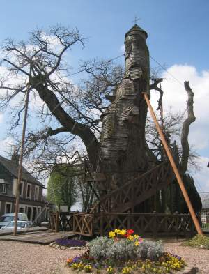 विशाल वृक्ष, जिसके तने में बनाया गया गिरिजाघर
