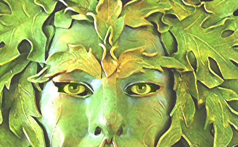 दूसरी दुनिया से आये हरी त्वचा वाले भाई-बहन का रहस्य