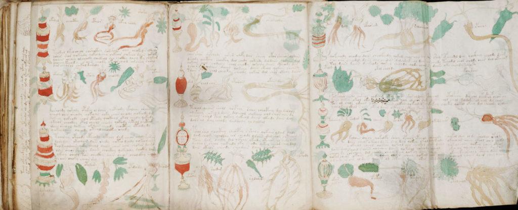 voynich_manuscript3