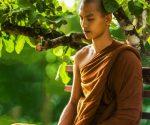 एक बौद्ध भिक्षु के पुनर्जन्म की कथा